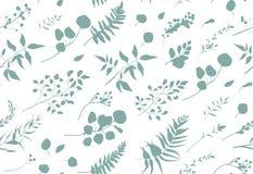 Free Seamless Pattern Of Eucalyptus Palm Fern Different Tree, Foliage Stock Photo - 107293360
