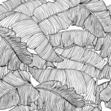 Seamless Pattern Of Exotic, White Banana Leaves With A Black Outlines Isolated On A Transparent Background. Royalty Free Stock Photos