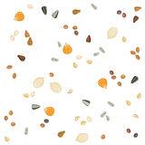 Seamless pattern of oilseeds. Solid fill seamless pattern of corn, grape seeds, rape, sesame, sunflower, and cottonseeds Royalty Free Stock Photography
