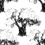 Seamless pattern with old olive tree Royalty Free Stock Photos