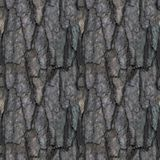 Seamless pattern of old tree barque. Seamless pattern with fragment of broken tree barque for design or background stock image