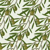 Seamless pattern with olive branches decorative seamless Stock Photography