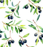 Seamless pattern with olive branches. Hand drawn watercolor illustration. Royalty Free Stock Images