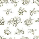 Seamless pattern with olive branches. Retro decorative texture background. Vector Stock Photos