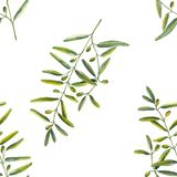 Seamless pattern of olive branches in watercolor royalty free illustration