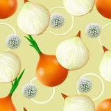 Seamless pattern with onion Royalty Free Stock Photo