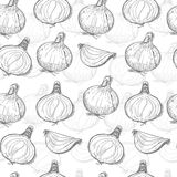 Seamless pattern with onions Stock Photography