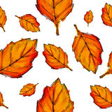 Seamless Pattern Of Orange Autumn Leaves Watercolor. Art Royalty Free Stock Photography
