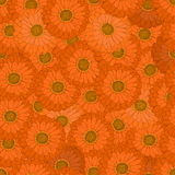 Seamless pattern. The orange flower. Gerbera. Simple and elegant design. Bright background. Asymmetric. Vector illustration Stock Photo