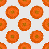 Seamless pattern. The orange flower. Gerbera. Simple and elegant design. Bright background. Symmetry. Vector illustration Stock Image