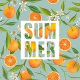 Seamless Pattern. Orange Fruits Background. Floral Pattern Royalty Free Stock Photos