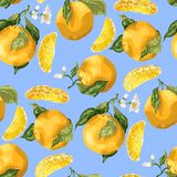 Seamless pattern with orange fruits and slices. Blooming flowers stock illustration