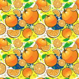 Seamless Pattern Orange Fruits Summer Ornament Background Stock Photography