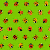 Seamless Pattern with Orange Ladybugs Stock Image