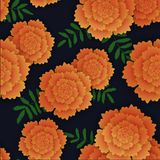 Seamless pattern with orange marigold and leaves. Vector illustration on black background Stock Photos