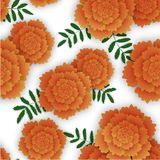 Seamless pattern with orange marigold and leaves. Vector illustration on white background Stock Photo