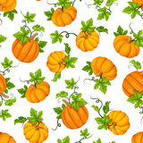 Seamless pattern with orange pumpkins and green leaves. Vector illustration. Stock Images