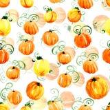 Seamless pattern of orange pumpkins watercolor on a white background. Seamless pattern of orange pumpkins watercolor for background Royalty Free Stock Photos
