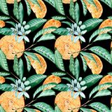 Tangerine seamless pattern. Orange cut, flowers and leaves. Watercolor illustration isolated on black background vector illustration