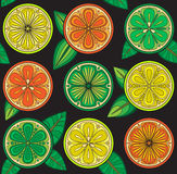 Seamless pattern of oranges, lemons and limes. Royalty Free Stock Image