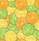 Seamless Pattern with Oranges, Lemons and Limes Royalty Free Stock Photo