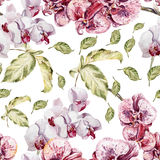Seamless pattern with orchid flowers and leaves Stock Images