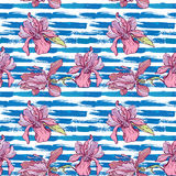 Seamless pattern with orchid flowers on the striped grunge blue vector illustration