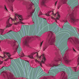 Seamless pattern with orchid. Texture of  flowers on green  background. Vector Stock Photo