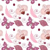 Seamless pattern orchids and butterflies. royalty free illustration