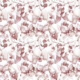 Seamless pattern with Orchids flowers Stock Photography