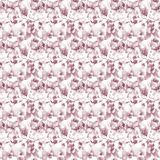 Seamless pattern with Orchids flowers Royalty Free Stock Photography