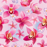 Seamless pattern with orchids and frangipani Royalty Free Stock Photo