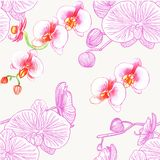Seamless pattern with orchids. Watercolor royalty free illustration