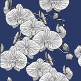 Seamless pattern with orchids. Hand drawn stock illustration