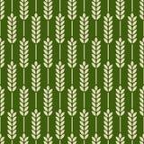 Seamless pattern. organic. grains Stock Photos
