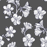 Seamless pattern with orhid. Orchid flower.Seamless pattern for your design Stock Images