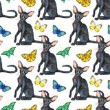 Seamless pattern of oriental black cats. Painting animal illustration