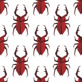 Seamless pattern of origami staghorn beetle Stock Images
