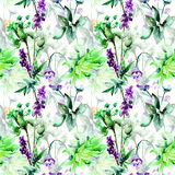 Seamless pattern with Original Summer flowers. Watercolor illustration Royalty Free Stock Image