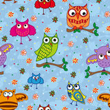 Seamless pattern with ornamental owls over light blue Stock Images