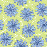 Seamless pattern with ornate chicory flower in blue on the green background with dots. Floral background in contour style Royalty Free Stock Photography