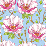 Seamless pattern with ornate magnolia flower in pink and green leaves on the blue background. Stock Photo