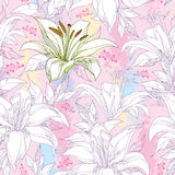Seamless pattern with ornate white Lily flower on the textured pastel background. Elegance floral background in pastel. Royalty Free Stock Image