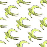Seamless pattern of outline abstract swallow birds Royalty Free Stock Photography