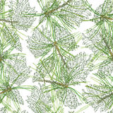 Seamless pattern with outline pine cones and watercolor pine bra Royalty Free Stock Photo