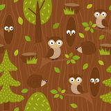Seamless pattern owl and hedgehog in forest Stock Photography