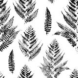 Seamless pattern with paint prints of fern. Leaves Stock Image