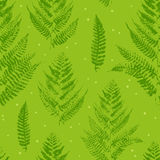 Seamless pattern with paint prints of fern leaves Royalty Free Stock Photography