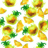 Seamless pattern of painted pineapple Stock Photos