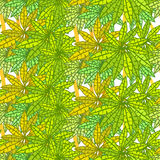 Seamless pattern of palm without gaps. vector illustration Royalty Free Stock Image
